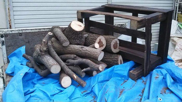 生木 廃棄処分