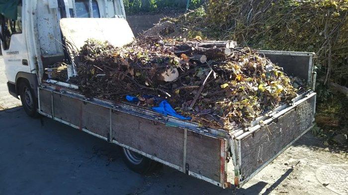 生木 産業廃棄物